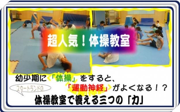 体操教室で養える3つの力LINK